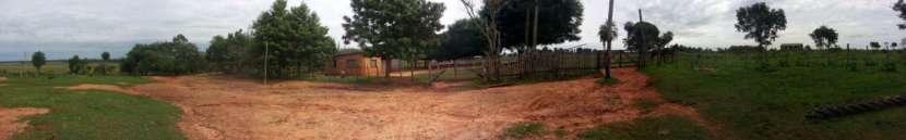 Campo de 122 hectáreas - 5