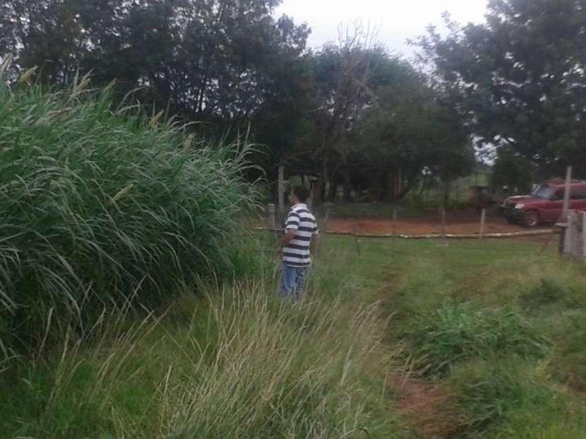 Campo de 122 hectáreas - 2