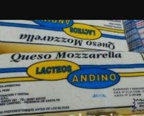 Mozarella andino