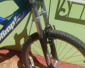 Bicicleta Olimpic