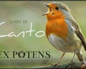 Curso de canto pop, rock y folclorico