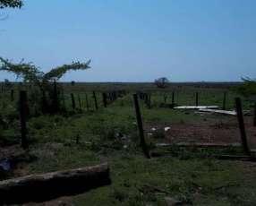 Campo de 20 Has en Arroyos y Esteros