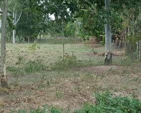 Terreno en Villa Florida 892 m²