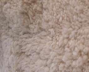 Piel de oveja blanca