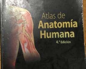 Atlas de Anatomia Frank Netter