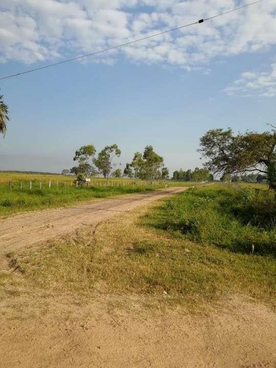 Campo en Benjamín Aceval - 6
