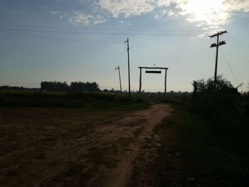 Campo en Benjamín Aceval - 7