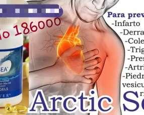 Artic Sea