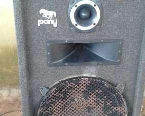 Woofer y amplificador