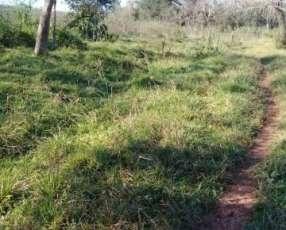 Campo de 12 hectáreas en Yaguarón