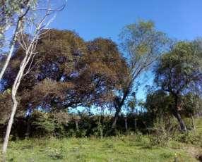 Terrenos 840 m2 Guarambaré