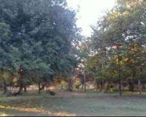 Terreno 12x30 en Ypacarai a 3 cuadras de la municipalidad