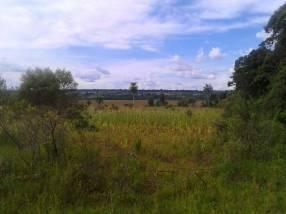 Terreno de 22 hectáreas
