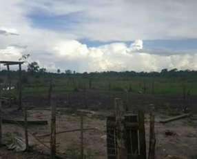 Granja en la zona de Loreto departamento de Concepcion