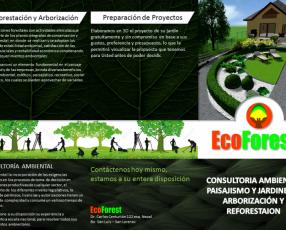 Paisajismo jardinería arborización y consultoría ambiental