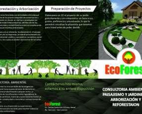 Jardineria paisajismo arborización y consultoría ambiental