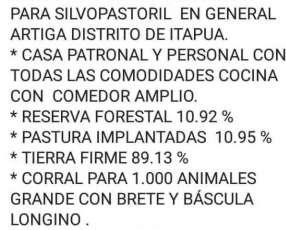 Terreno agrícola ganadera de 10.432 hectáreas en General Artigas
