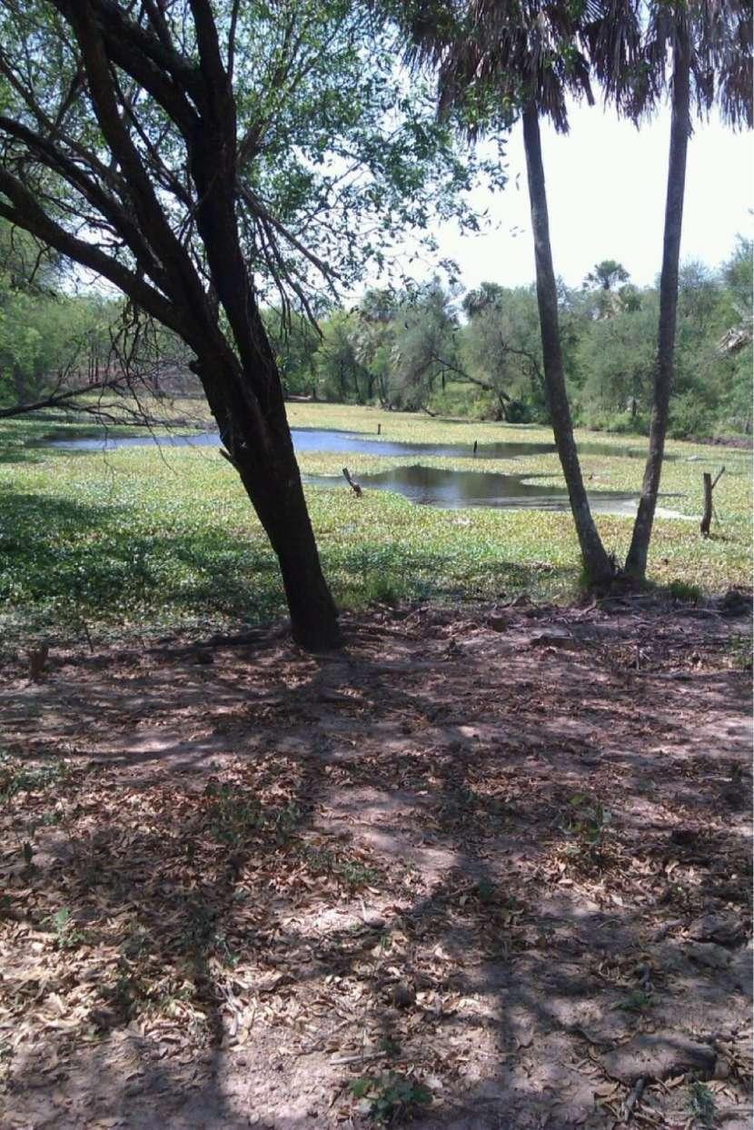 Terreno de 1196 hectáreas sobre ruta 12