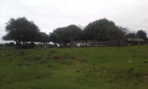 Terreno de 20 hectáreas - 2