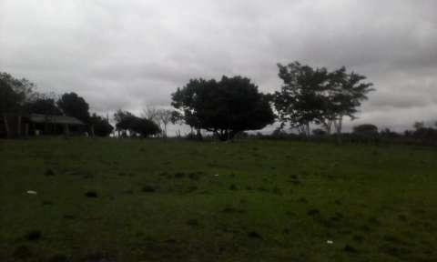 Terreno de 20 hectáreas - 3
