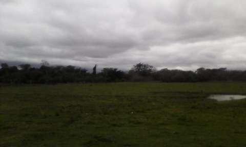 Terreno de 20 hectáreas - 4