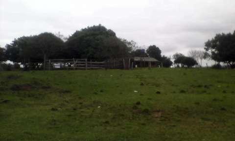 Terreno de 20 hectáreas - 8