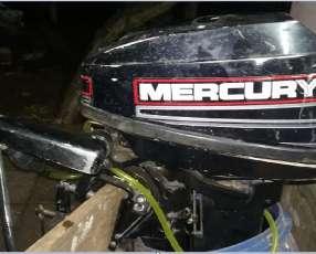 Motor fuera de borda Mercury de 15 hp