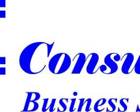 Consultor Pymes