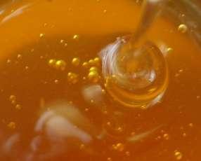 Miel orgánica 1oo % sin químico