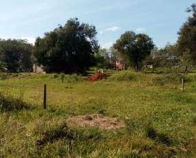 Terreno 12x34 zona Britez Borges y Libertad Barrio Molino Luque