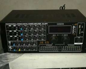 Amplificador Professional Megasonic