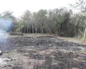 Terrenos en Areguá Costa Fleitas