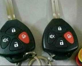 Sistema de entrada sin llave para automóvil y camioneta