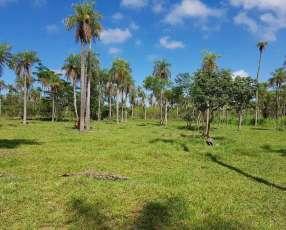 Propiedad de 3 hectáreas en Atyrá cod B1002