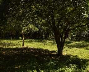 Terreno en Itagua