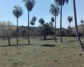 10 hectáreas en Atyrá