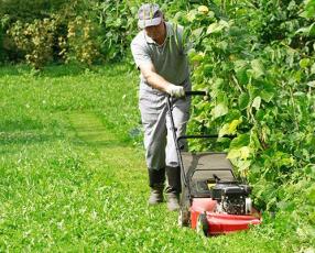 Limpieza de terreno y servicio de jardinería