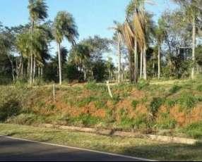 Terreno sobre ruta asfaltada Pirayú