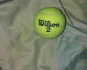 Pelotitas de tenis wilson 60 unidades