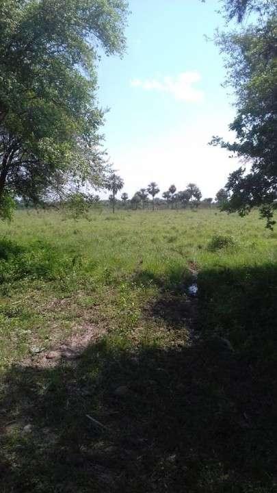 Campo en Benjamín Aceval - 5