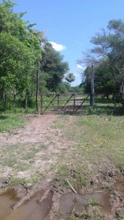 Campo en Benjamín Aceval - 4