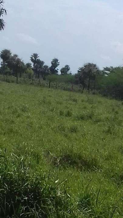 Campo en Benjamín Aceval - 2