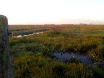 Terreno de 176 hectáreas s/asfalto en Santiago Misiones - 5