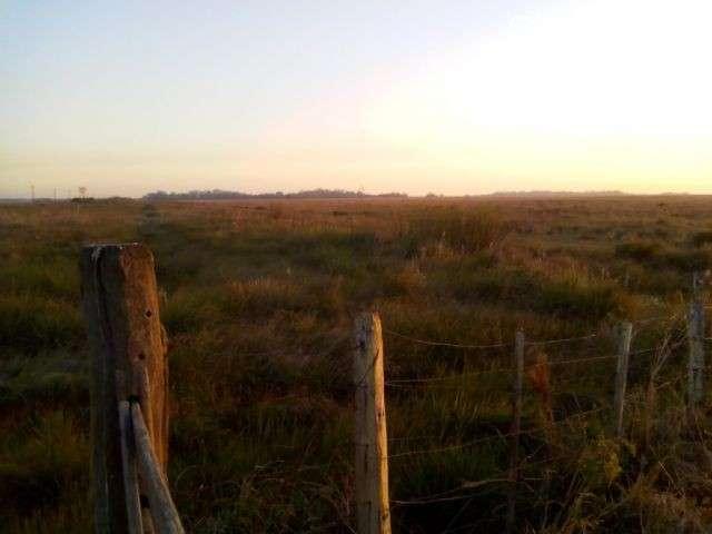 Terreno de 176 hectáreas s/asfalto en Santiago Misiones - 3