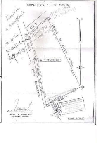 Terreno 15.000 m2 al lado del Estadio de Fútbol de Encarnación - 2