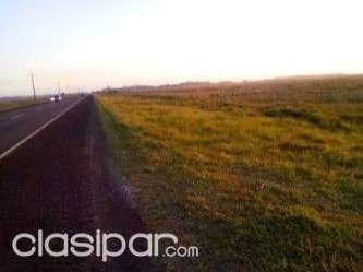 Terreno de 176 has. s/asfalto en Santiago Misiones - 0
