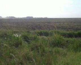 Campo 1.400 hectáreas sobre ruta Ayolas Yabebyry Misiones