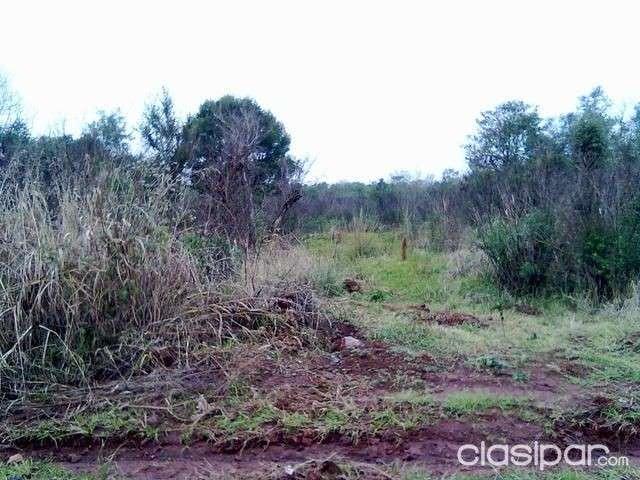3 hectáreas en barrio Chaipe de Encarnación - 2