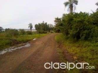 Terreno de 2 hectáreas en San Juan del Paraná - 2