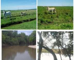 Estancia de 700 hectáreas en Mbuyapey con animales incluido